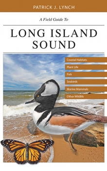 Patrick Lynch: A Field Guide to Long Island Sound